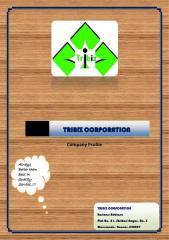 Construction Materials & Services