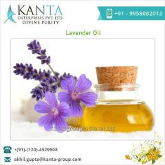 100% Pure and Natural Lavender Essential Oil Supplier