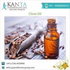 Excellent Quality Clove Oil