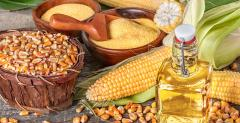 Starch & Corn Derivative Products