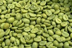 Organic Green Coffee