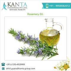 Naturally Extracted Rosemary Oil