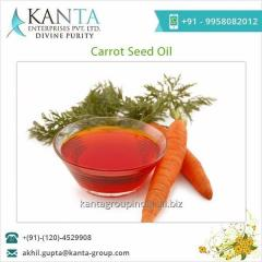 Best Grade Carrot Seed Oil