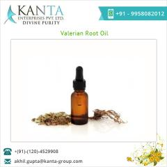 Standard Quality Valerian Root Oil