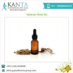 Standard Quality Valerian Root Oil