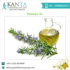 Aromatic Rosemary Essential Oil
