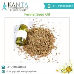 Spicy Smelling Fennel Seed Oil