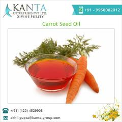 Health Beneficial Carrot Seed Oil for Sale