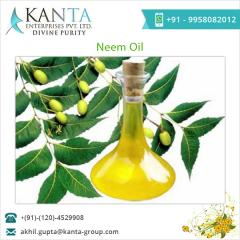 Fresh Neem Oil for Dandruff Treatment