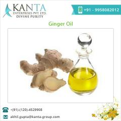 Pure Natural Ginger Oil Exporter