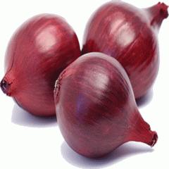 Fersh onion