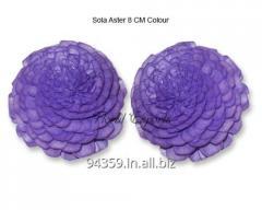 Sola Aster 8 CM Colour