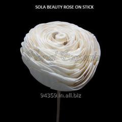 SOLA BEAUTY ROSE ON STICK