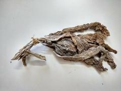 Rolled Motihari Rustica Tobacco
