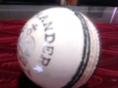 BDM Cricket Ball