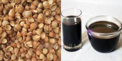 Coconut shell bio oil