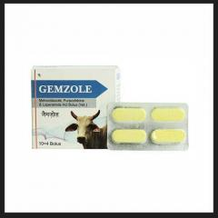 Gemzole (Metronidazole Loperamide) Bolus