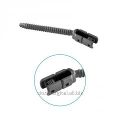 Polyaxial Reduction Pedicle Screw