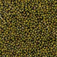 Moong Lentils
