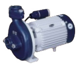 Centrifugal Monobloc Pumps