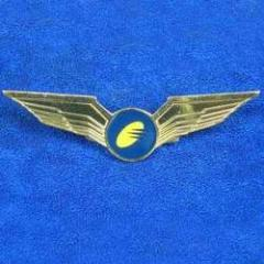 Flying Wing Badge