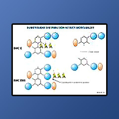 Lubricant Chemicals