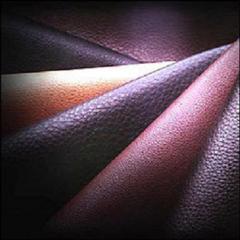 Buffalo Hide Leather