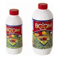 H-Flowering Boom