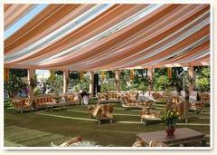 Lotus Theme Tent