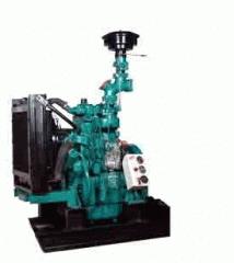 Bio Mass Engine