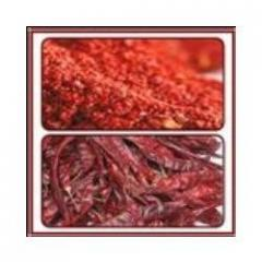 Dried Red Chilly & Powder