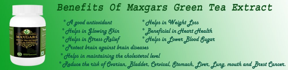 maxgars_green_tea_extract_500mg_60_capsules