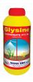 Glysine