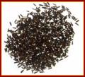 Black Cumin (Kilonjee)
