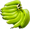 Spray Dried Ripe Banana Pulp Powder
