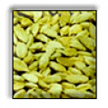 Cardamom Small