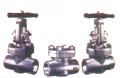 Forged Steel Gate Globe & Check Valve