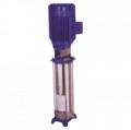 S.S. Vertical Inline & Multistage Pump