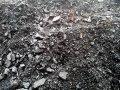Arunachal Coal