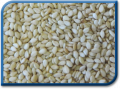 Semillas de oleáceas