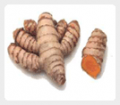 Phytoproducts - Curcumin