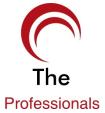 The Professionals, Proprietorship Firm, Delhi