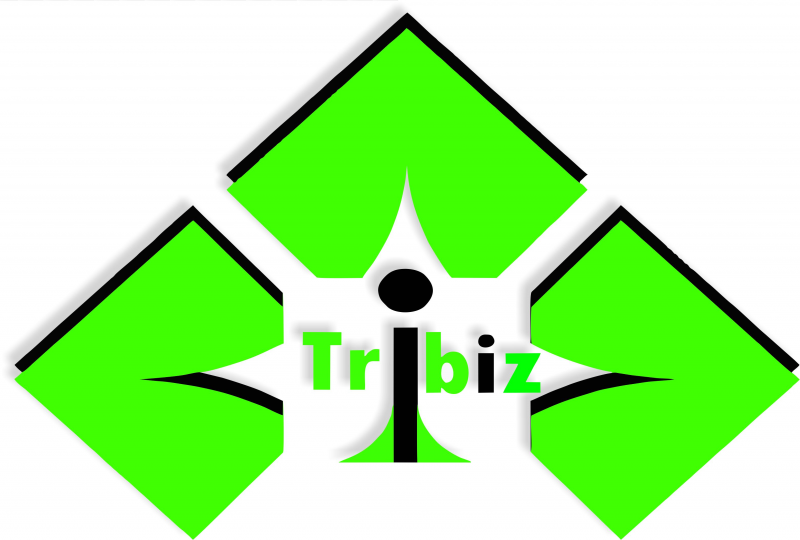 Tribiz Corporation, Nagpur
