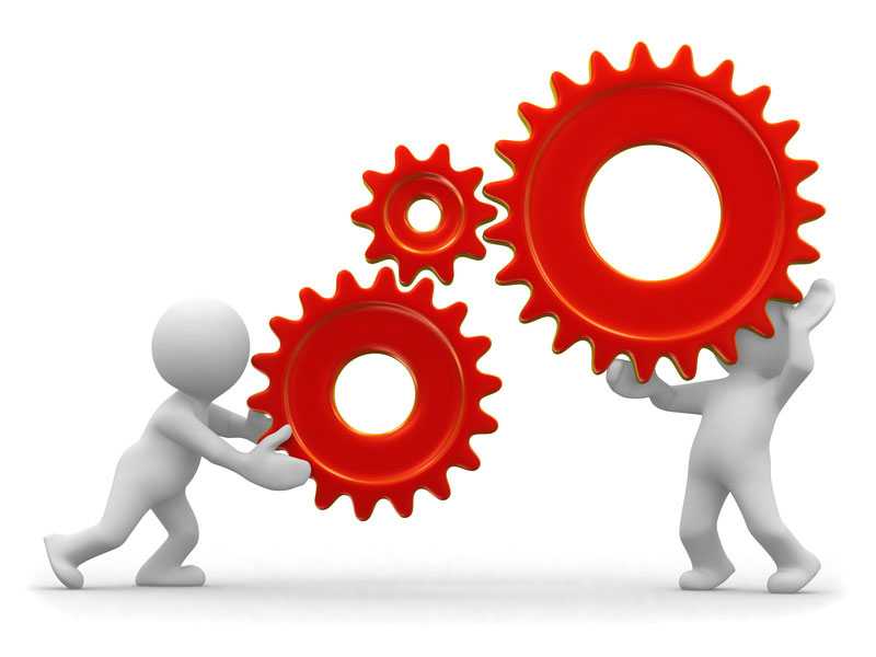 Order Import & Export Consultancy