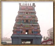 Order Tour to Kodaikanal, India