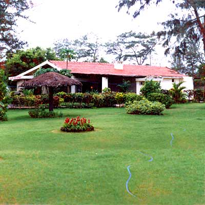 Order Gardening, landscaping services