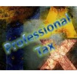 Order Professional Tax