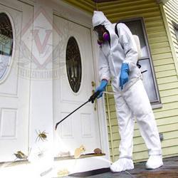 Order Pest Control Services