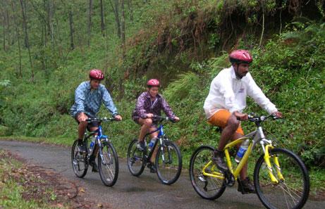 Order Bicycle tour