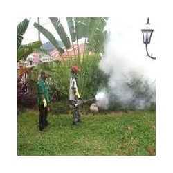 Order Fumigation & Fogging Services